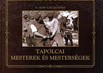 Tapolcai Mesterek és mesterségek című könyv fedőlapjának a képe.